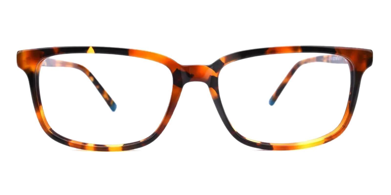 Leupp Corner Tortoise Acetate Eyeglasses , SpringHinges , UniversalBridgeFit Frames from ABBE Glasses