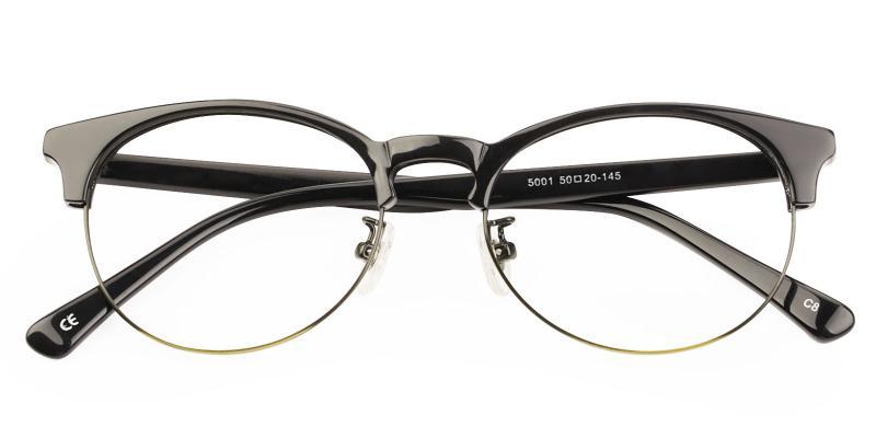 Luna - Metal , Combination , TR Eyeglasses , NosePads