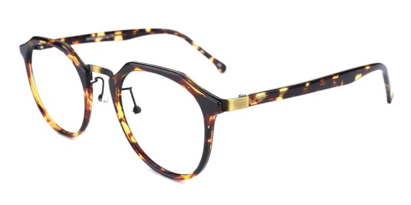 Leopard Escalante - Metal , Combination , TR Eyeglasses , NosePads