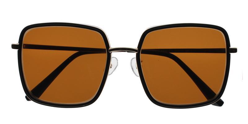 Black Reagan - Metal , Combination , TR Sunglasses , NosePads