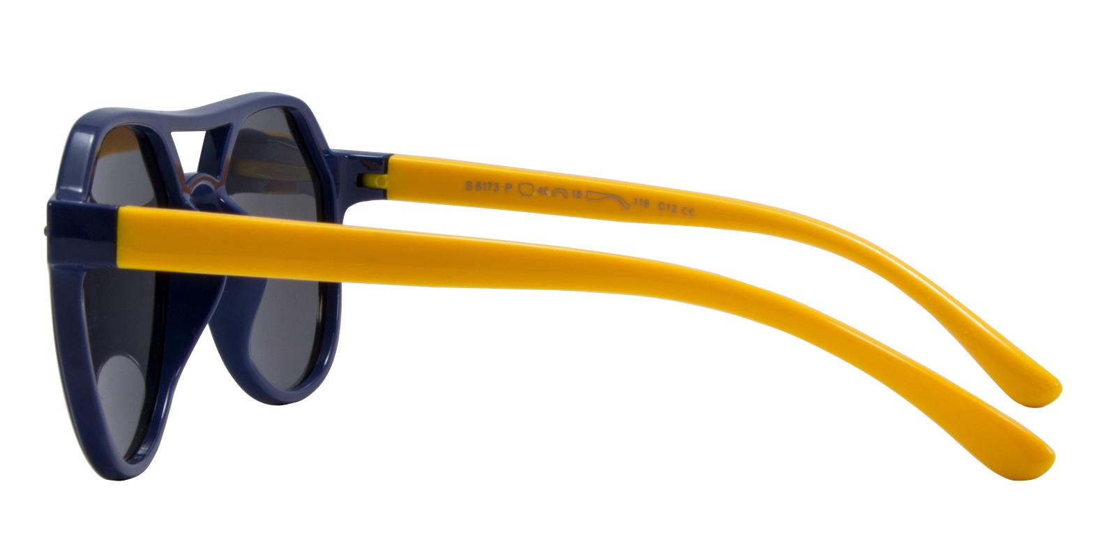 Proteus Multicolor TR Sunglasses , UniversalBridgeFit Frames from ABBE Glasses