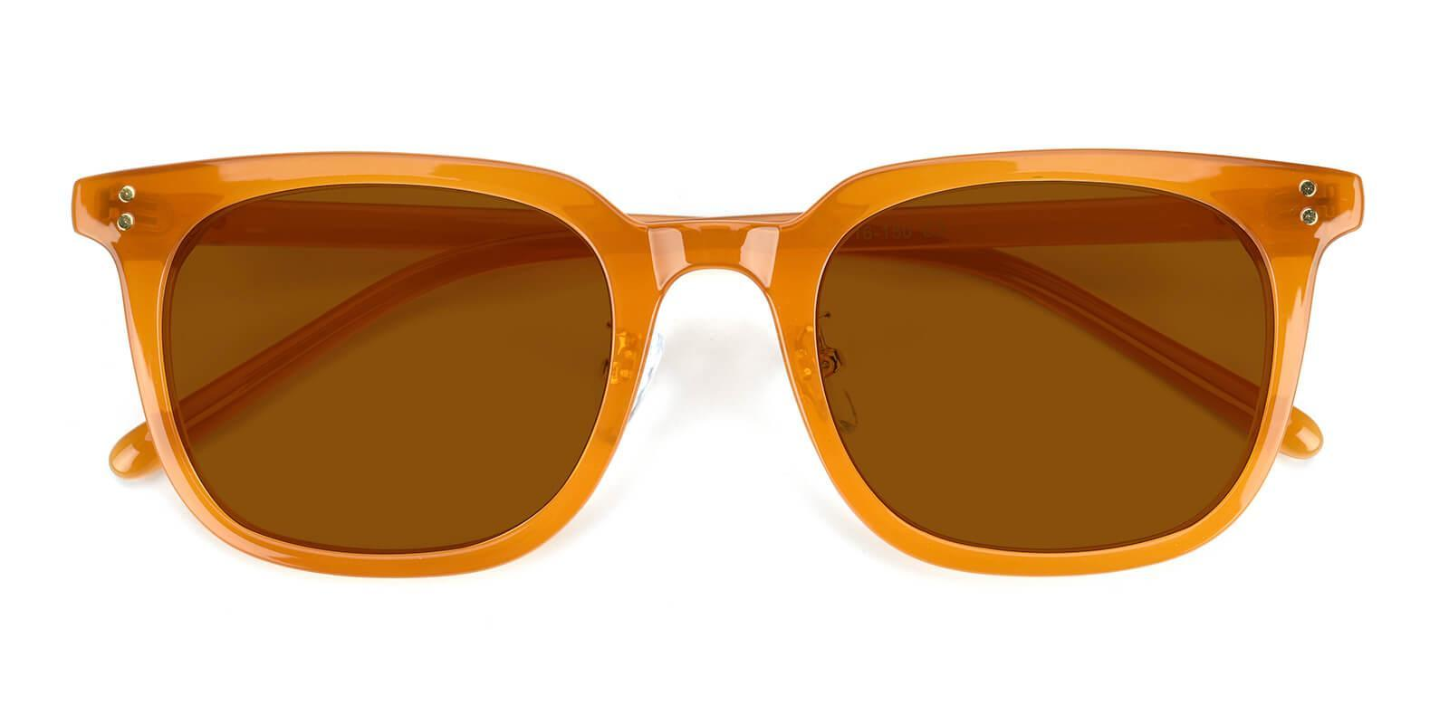 Identity Brown TR NosePads , Sunglasses Frames from ABBE Glasses
