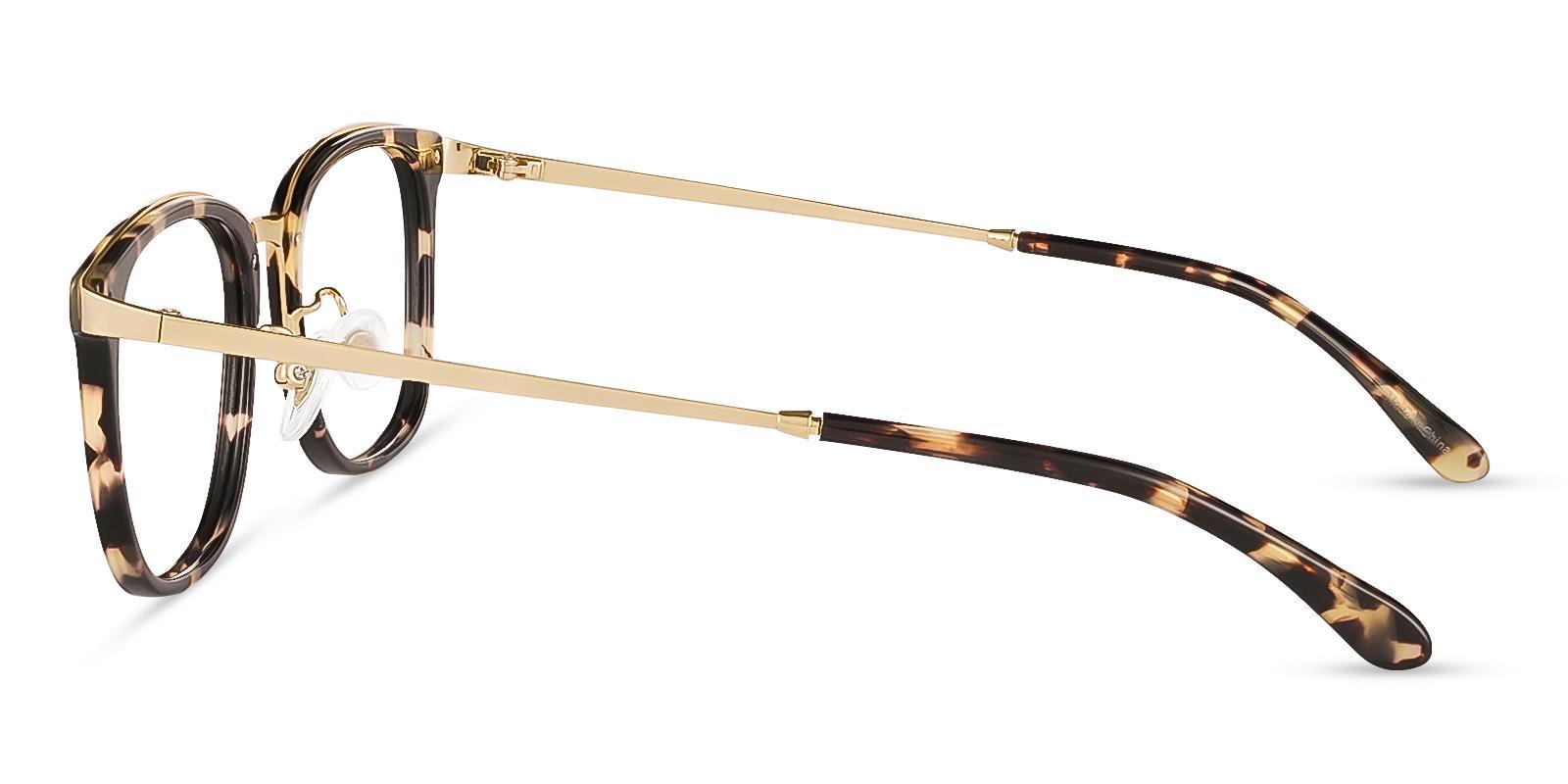 Explorer Leopard Metal Eyeglasses , NosePads Frames from ABBE Glasses