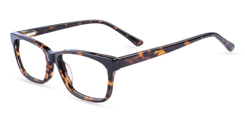 Tortoise Demain - Acetate ,Universal Bridge Fit