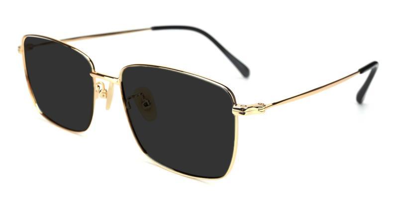 Gold Synapse - Titanium ,Sunglasses