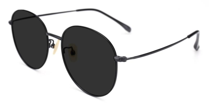 Black Variable - Titanium ,Sunglasses