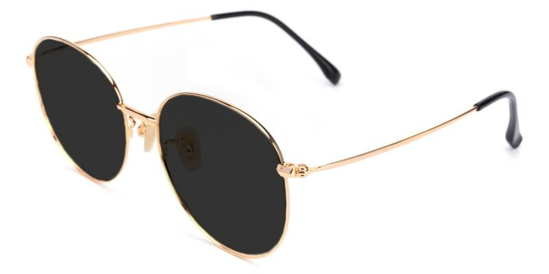 Gold Variable - Titanium Lightweight , NosePads , Sunglasses