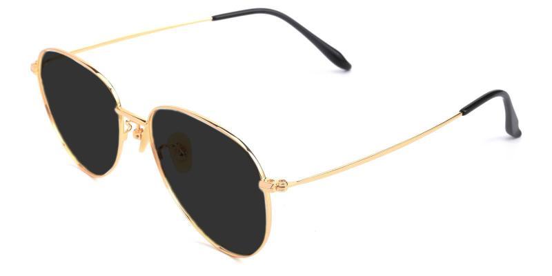 Gold Tower - Titanium ,Sunglasses