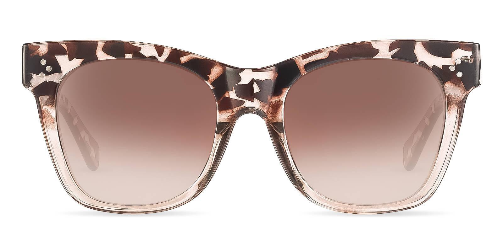 Nevada Tortoise Plastic Fashion , Sunglasses Frames from ABBE Glasses